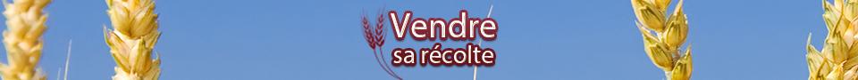Cours des céréales :  Marché agricole